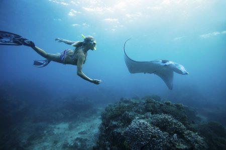 Batansabocottage-snorkelingtourinnusapenida-nusapenidahotels-mantapointnusapenida-1