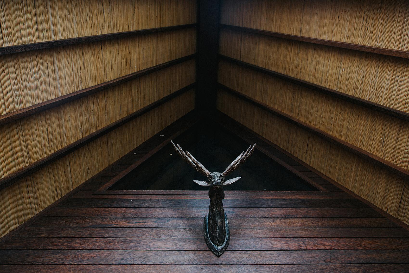 Exterior by Deer