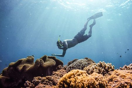 divinginnusapenida-snorkrelingdinusapenida-batansabocottage3