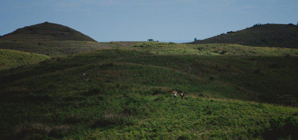 bukitTeletubbies-nusapenida-batansabocottage-hotelsinnusapenida-pulauseribunusapenida7