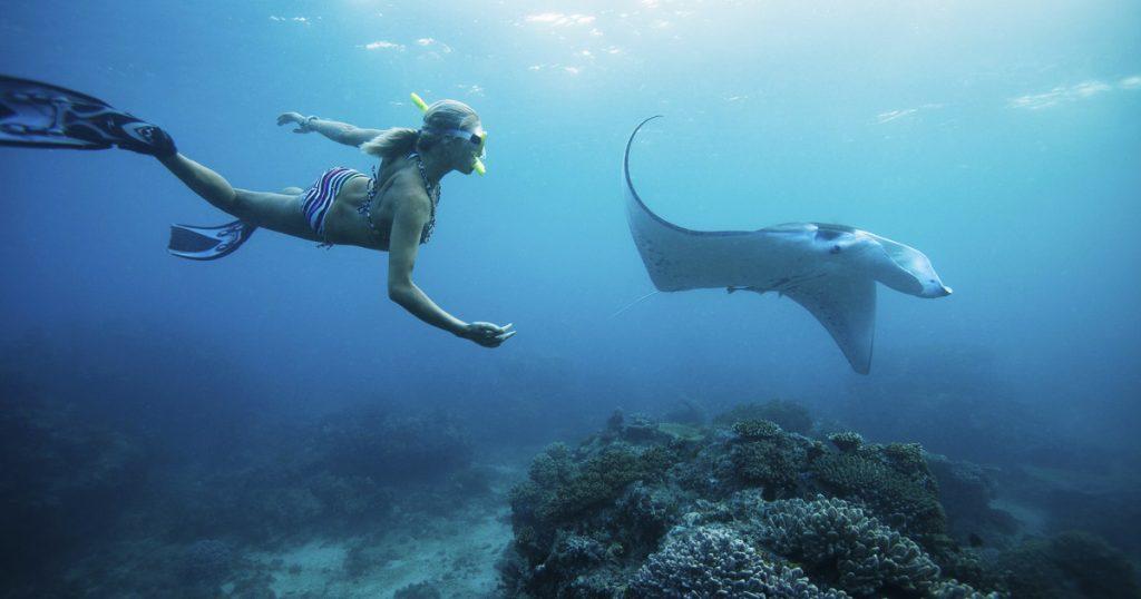 Batansabocottage-snorkelingtourinnusapenida-nusapenidahotels-mantapointnusapenida-3